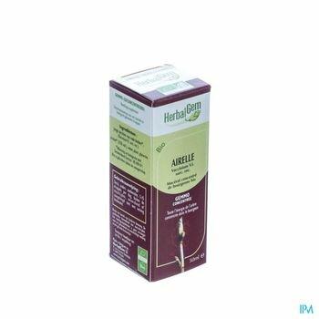 herbalgem-airelle-macerat-concentre-de-bourgeons-bio-50-ml