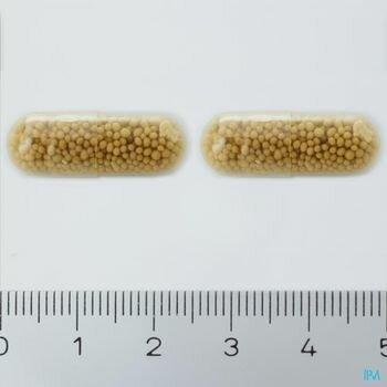 cerevisia-30-gelules